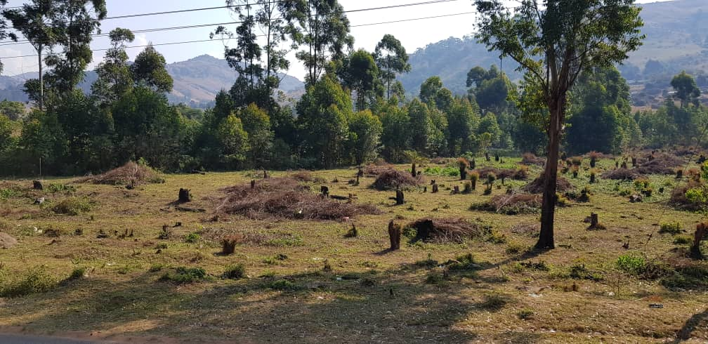 Mbabane - Pine Valley ... Vacant Plot For Sale