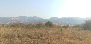 Shiselweni - Sandleni...Vacant 113.5ha Farm For Sale at Sandleni, Eswatini for 2500000
